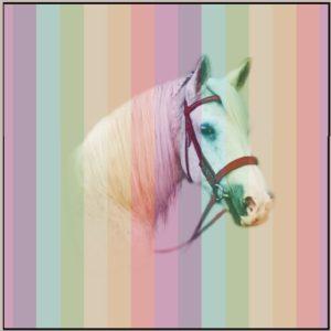 Hest hvit med striper panel 38 x 38 cm